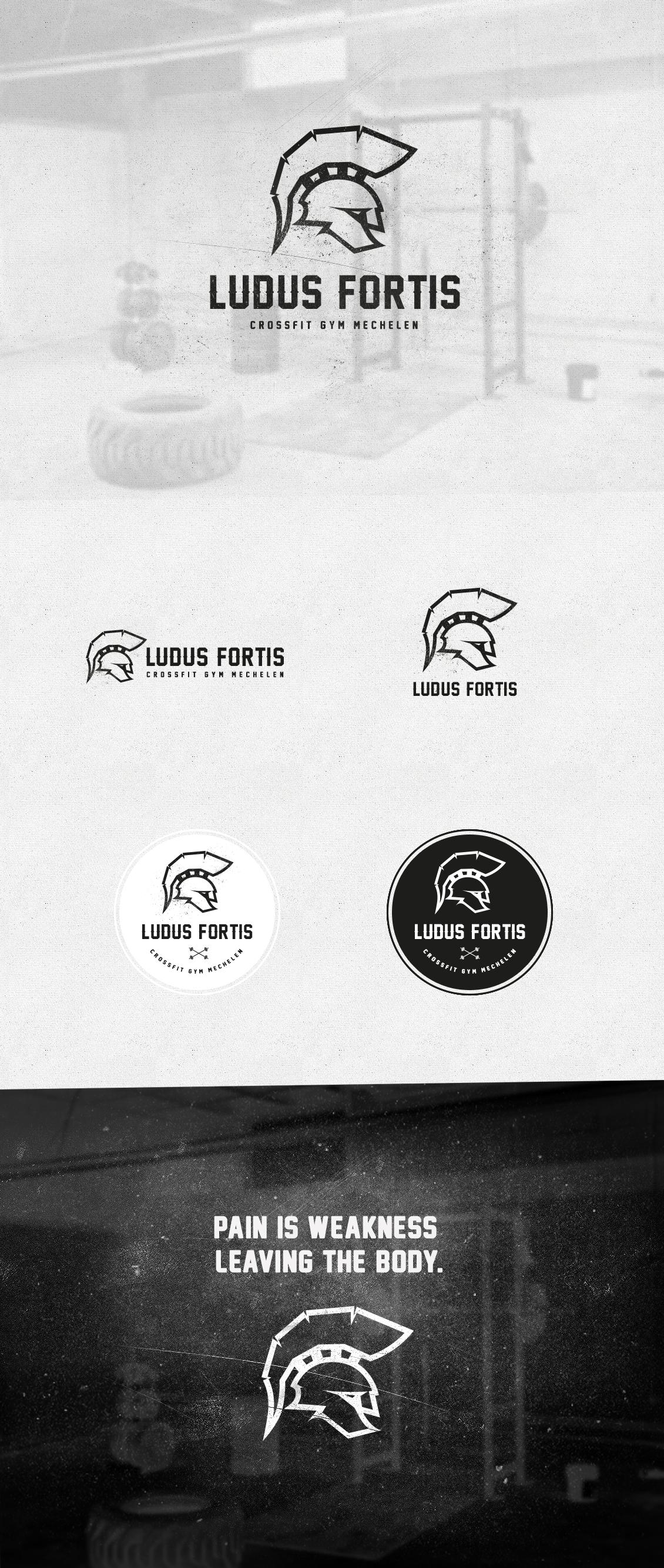 ludusfortis_logoPresentationpsd
