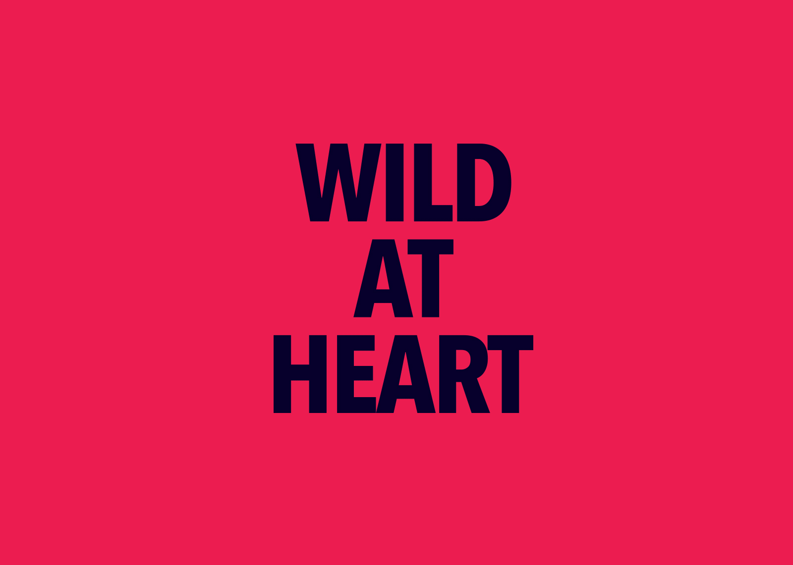 Wild at Heart branding by Nachraven